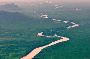 Pristine landscape in Gambella, is one of the largest biodiversity concentration areas in Ethiopia
