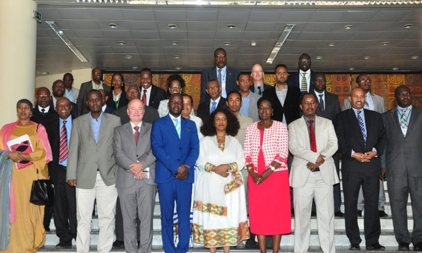 IGAD Member Countries Establish the  Horn of Africa Wildlife Law Enforcement Network (HAWEN)