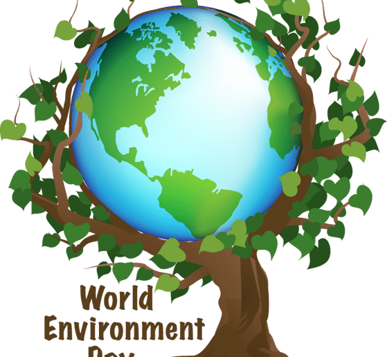 World Environment Day High-level Dialogue forum