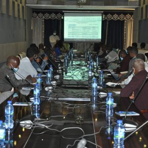 HoAREC&N-AAU held a stakeholders consultation workshop on East African Afforestation, Reforestation and Re-vegetation Program (EARRP) and the Jama-Urji Farmers Managed Forestry Project
